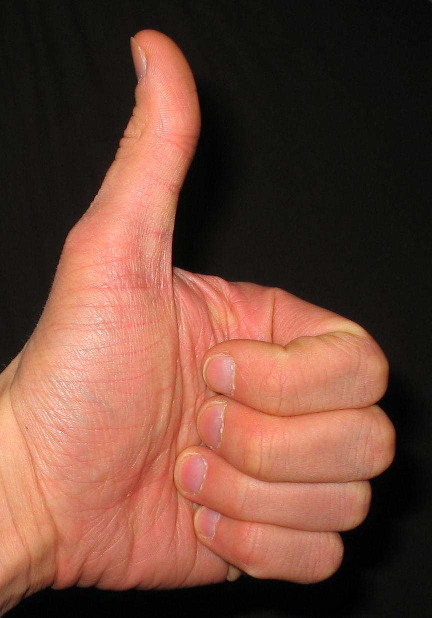 thumbs_up.jpg